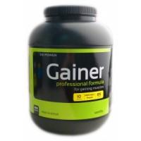 Gainer Professional Formula (4кг)