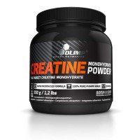 Creatine Monohydrate Powder (550г)